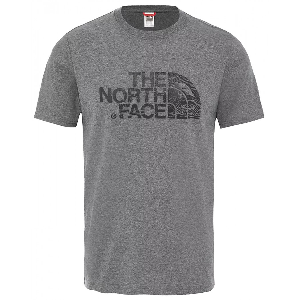 T-SHIRT THE NORTH FACE WOODCUT DOME GRIS