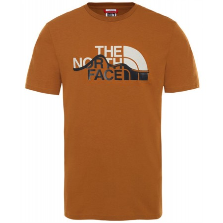 Tee Shirt Moutain The North Face